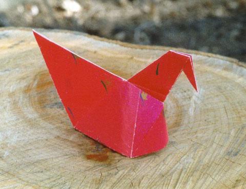 Курица (изображение)